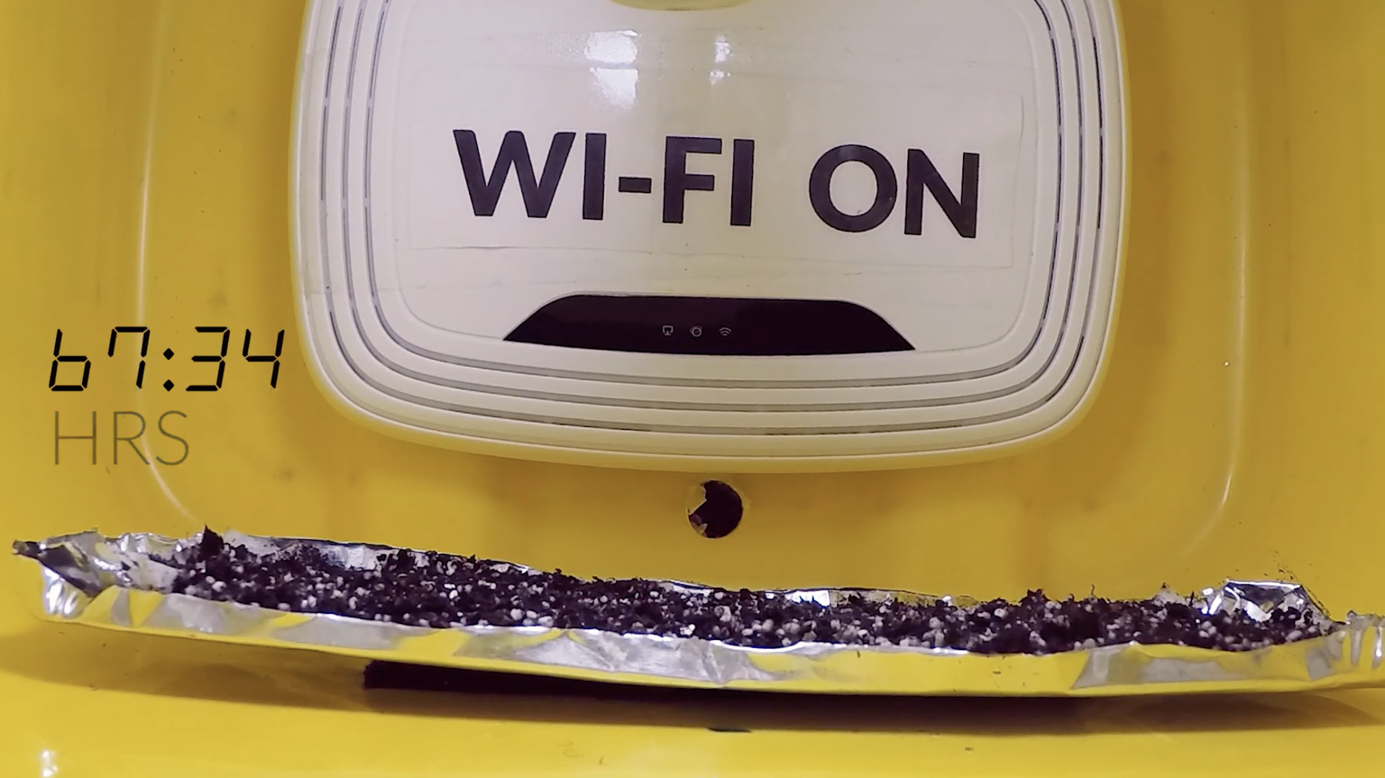 Wifi působí negativně na klíčení rostlin